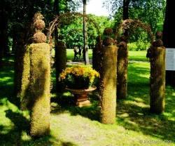 Императорские сады России VI — фото 57