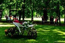 Императорские сады России VI — фото 4