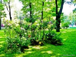 Императорские сады России VI — фото 9