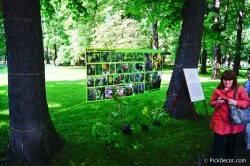 Императорские сады России VI — фото 76