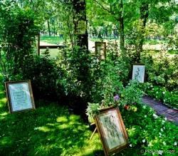 Императорские сады России VI — фото 132