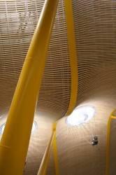 Потолок международного аэропорта Барахас в Мадриде — фото 1