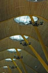 Потолок международного аэропорта Барахас в Мадриде — фото 4