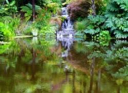 Пруд в саду Ayrlies