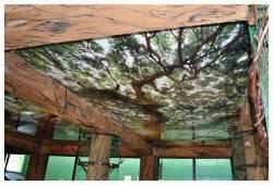 Натяжной потолок с принтом от Zevs Group
