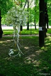 Императорские сады России VII — фото 13