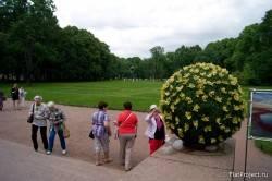 Императорские сады России VII — фото 80