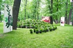 Императорские сады России VII — фото 18