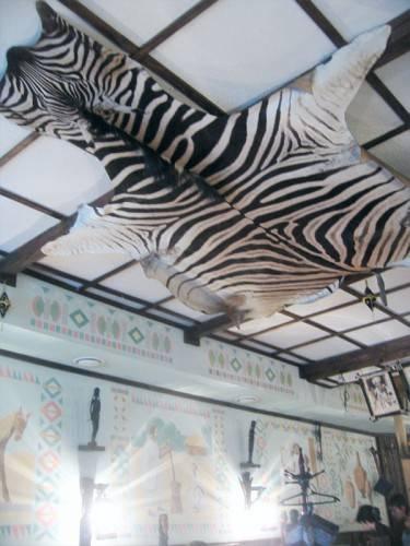 Зебра на потолке