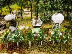 Сад храма Гинкаку-дзи — фото 5