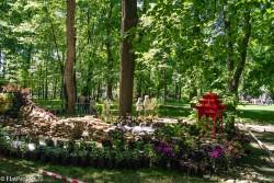 Императорские сады России VIII — фото 77