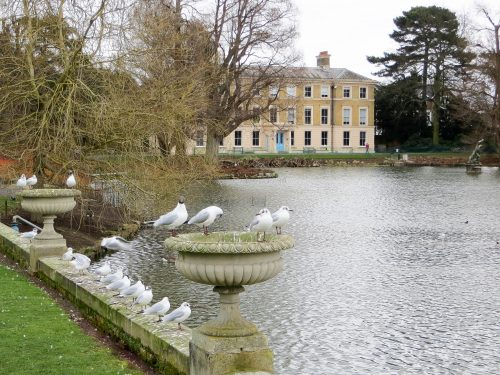 Английский сад дворца Кью — фото 2