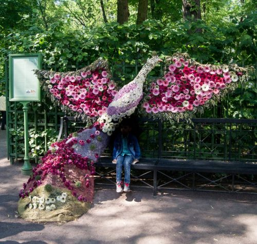 Императорские Сады 2018, Цветочная Ассамблея — фото 12