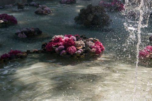 Императорские Сады 2018, Цветочная Ассамблея — фото 4